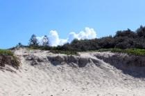 Jour 2_Port Stephens (108)