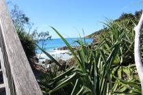 Jour 6_Byron Bay (36)