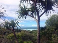 03. Fraser Island (200)