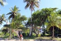 09. Mission Beach (15)